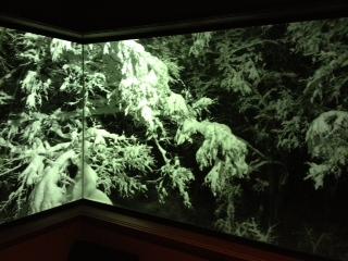 窓から雪景色.JPG